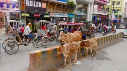 Busy street of Varanasi